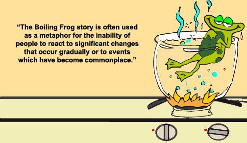 frog_zpsad84f488